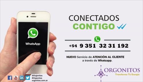 Whatsapp Orgonitos